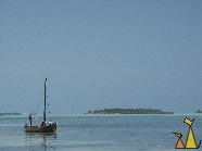 Fishing boat, Laamu Atoll, Maldives, lagoon, fishing boat, boat